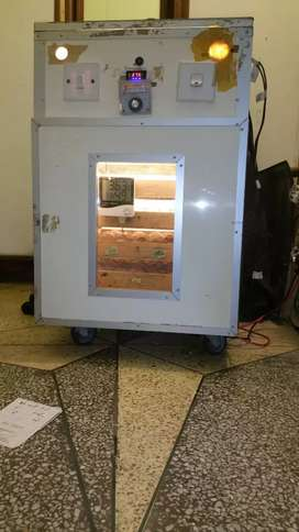 Incubator for eggs hatching