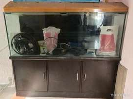 5 fit fish tank with water proof wooden stand with storage