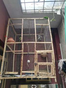 Colony Cage For sale!!!