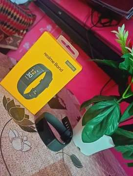 1100 rupees Realme band (Green). Fix price
