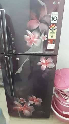 LG 260 litre designed fridge
