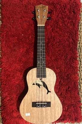 ukulele concert COWBOY