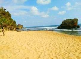 Tanah Pinggir Pantai Pasir Putih Gunung Kidul Luas 3.7 Hektar