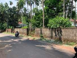 Near Silver Hills School, 14 Cent House Plot 12.50 Lakh Per Cent