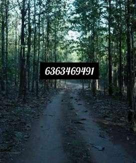 3 Acer Land for Sale 8 Km from Ganeshgudi suitable for Resort Homestay