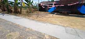 tanah ums area kost