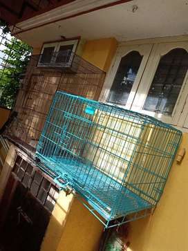 DOG AND RABBIT/PARROT Cage