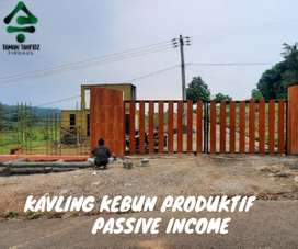 KAVLING KEBUN PRODUKTIF, PASSIVE INCOME, TAMAN TAHFIDZ FIRDAUS