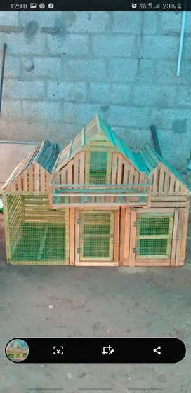 Biard cage for sale