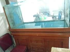 Kaca Aquarium Besar Jumbo Tank