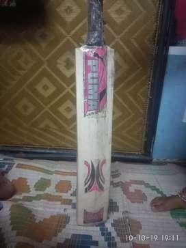 Tendulkar batting