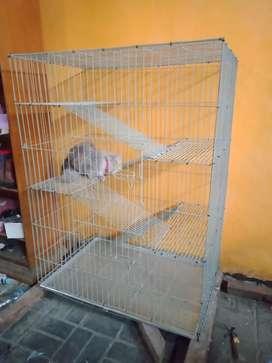 Hao Kandang Kucing 4 Tingkat 5 lantai