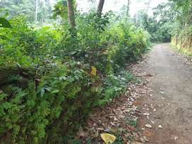 Kurupupady main road 750 miter20 cents land for sele