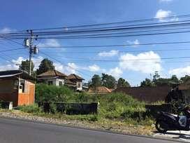 Jual tanah pinggir jalan utama arah selo