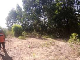 tanah poros jalan kariangau km 5 kontur datar balikpapan
