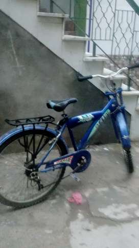 Deluxe new bicycle
