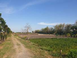Dengan membeli tanah investasi menjanjikan