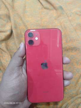 Iphone 11 128 gb red colour variant