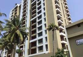 1790sq ft 3 bhk brand new flat at Edappally