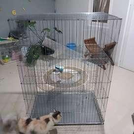 Kandang kucing ukuran 5 lantai 4 tingkat terbesar