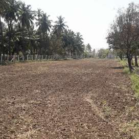 DTP APPROVED PLOT IN KEERNATHAM FOR IMMEDIATE SALE. 6 CENTS