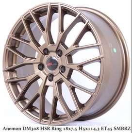 Anemon-DM308-HSR-Ring-18x75-H5x1143-ET45