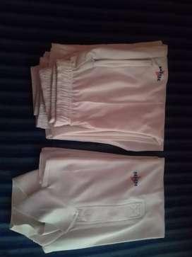 Spartan Senior Size Cricket Kit