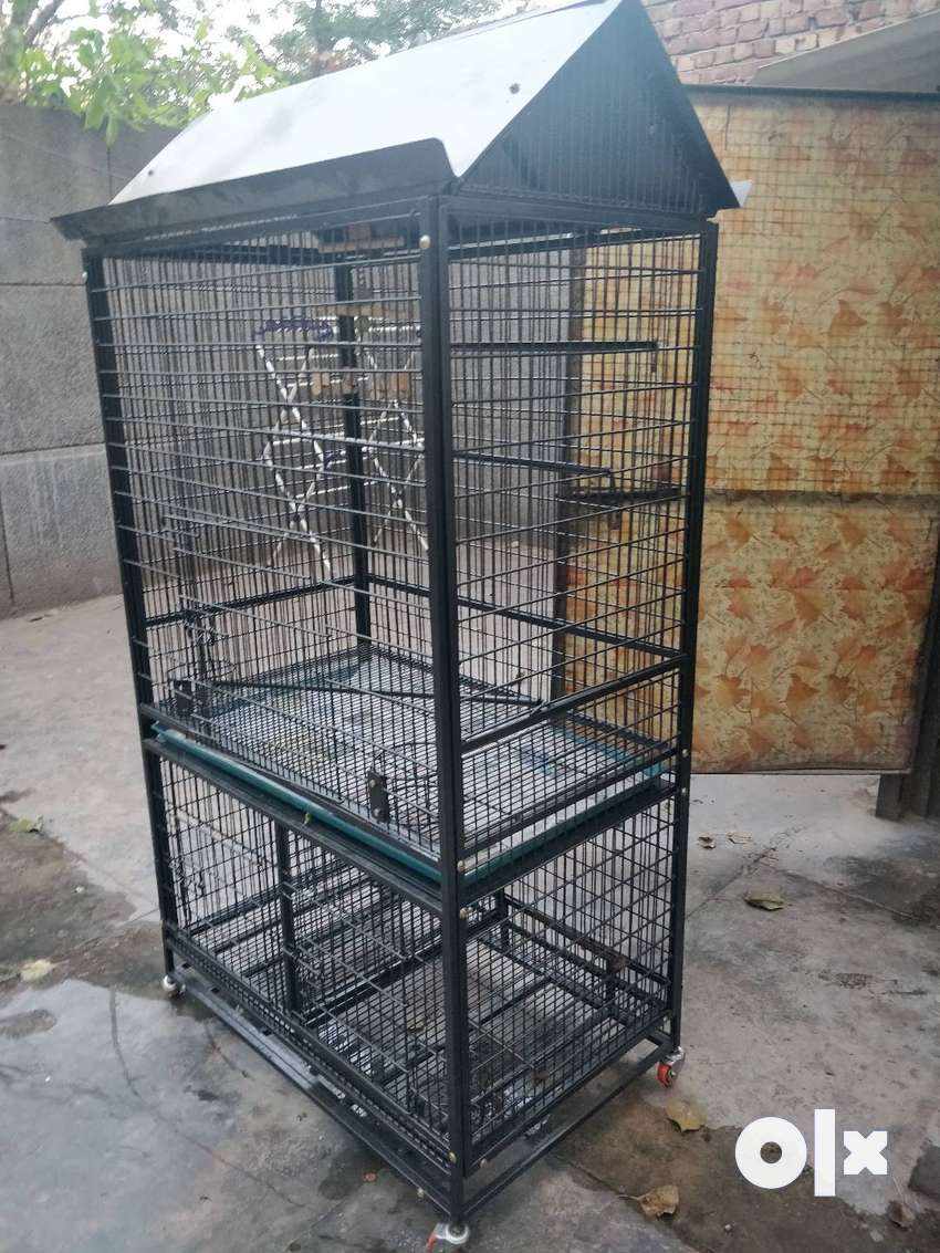 Bird cage (parrots and other big birds) 0