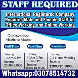 (male and female)Staff needed for online working