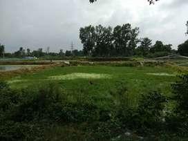 Land in Lucknow goela near matiyari