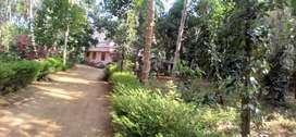 Agriculture land with house