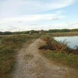 Tanah Industri, 9 ha, SHM, Poros Jalan Nasional, Sarang