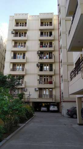 Brand new 3 bhk ready to move flat available in Boring Road