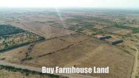 Farmlands for cattle dairy family