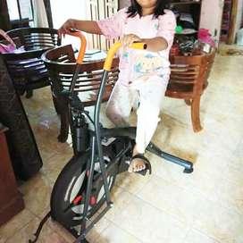 Alat olahraga platinum bike T554