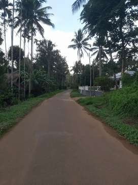 1 Acre square plot with 19cent road ,3kms from Meenagadi town.