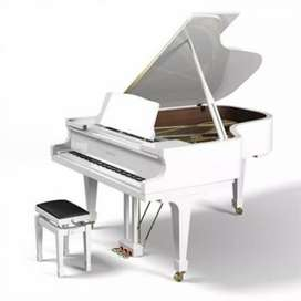 Grand Piano for Show & Rent