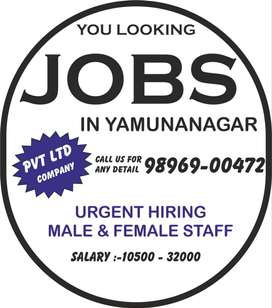 urgent hiring in company  bank