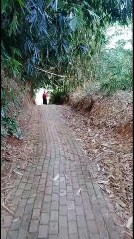 Tanah Murah di Sumur Rejo Gunungpati Semarang 350 rb/m luas 2.870m2