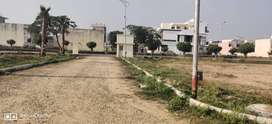 Plot 200 yard for sale in Tdi city sector 118 Mohali