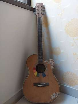 Acoustic guitar with cover