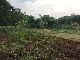 Dijual Tanah 2700 meter Di Desa Kertarahayu Kecamatan Setu Bekasi