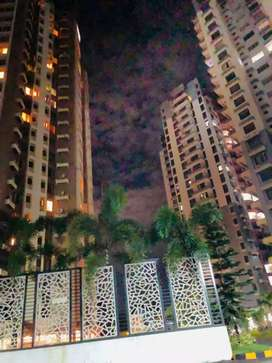 1 bhk fully furnished gated communitty flatt for rent at aluva area