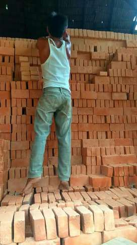 Batu bata merah lubuk alung kualitas terbaik,kuat dan kokoh.
