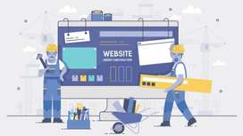 Build any website for business or personal use.