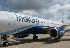 Indigo Airlines Hiring- Airport Job- Male / Female Fresher to Exper