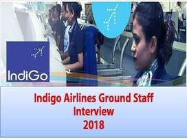We are hiring for Air Ticketing Executive, Ground Staf