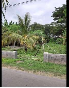 Tanah Strategis di Ponorogo Kota