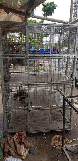 Chicken cage/ Murgion ka pinjara
