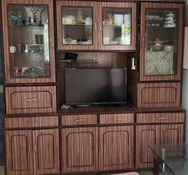 TV and Showcase unit